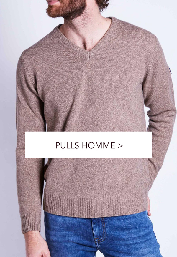 Pulls Homme